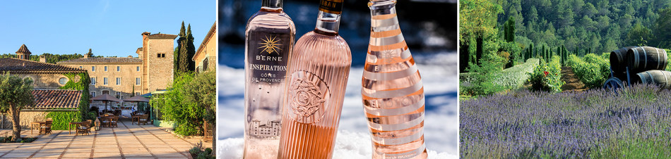 Provence Rose Group's Chateau de Berne and Ultimate Provence produce a range of high quality, authentic roses