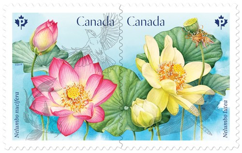 Canada Post heralds spring with Lotus issue (CNW Group/Canada Post)