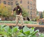 Unilever fortifica su compromiso con la agricultura urbana en EE.UU a través de nueva marca basada en responsabilidad social