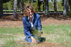 Dryden Woman Revisits Her Roots Through Tree Planting