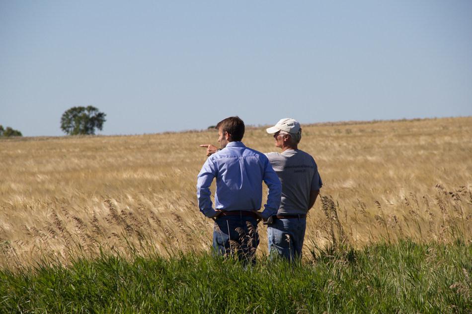 Albert Lea Seed's Matt Helgeson and organic farmer Carmen Fernholz survey the fields.