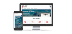 New Candela Corporation's B2B eCommerce site expands legendary customer service.