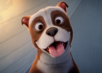 Fun Academy Motion Pictures Announces Humane Society of the United States' Support of Sgt. Stubby: An American Hero, In Theaters April 13, to Promote Doggone Important Message About Animal Adoption