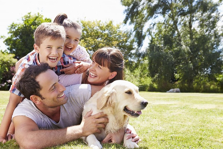 The rise in dog ownership among families is a key driver for the increased dog population in the UK. (PRNewsfoto/PFMA)