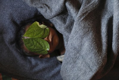 Damir Sagolj: Bangladesh Leaves cover the eyes of 11 month old Rohingye refugee Abdul Aziz after his body was brought back to family shelter at Balukhali refugee camp near Cox's Bazar, Bangladesh few hours after he died December 4, 2017. Adbul Aziz, whose family fled Myanmar some two months ago, died at local clinic after suffering from high fever and severe cough for ten days, his mother said.