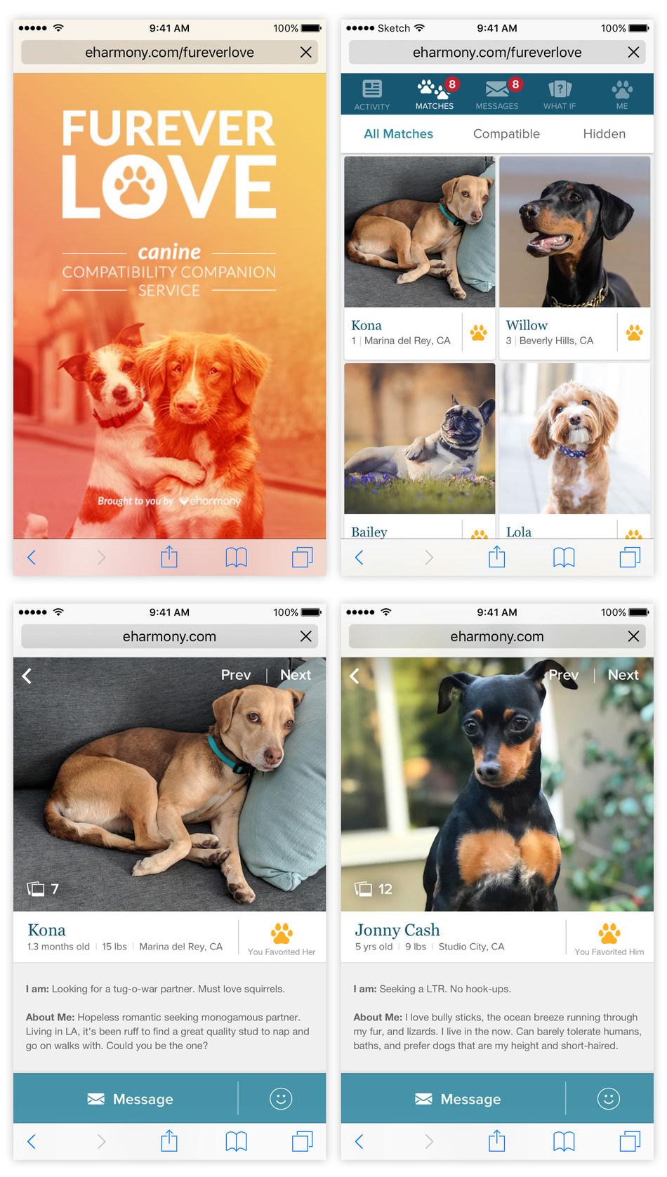 eharmony introduces Furever Love, a canine compatibility companion service