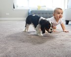 Empire Today® Rolls Out HOME Fresh - The World's First And Only 100 Percent Hypoallergenic, Odor-Neutralizing Carpet