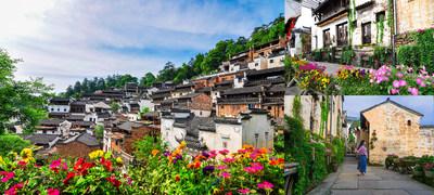 Huangling definiert die Oriental Flower Town mit aufgewerteter Erlebnistour neu
