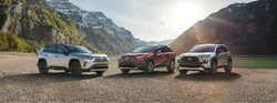 Local drivers looking for information on upcoming 2019 Toyota RAV4 crossover can learn with Salinas Toyota.