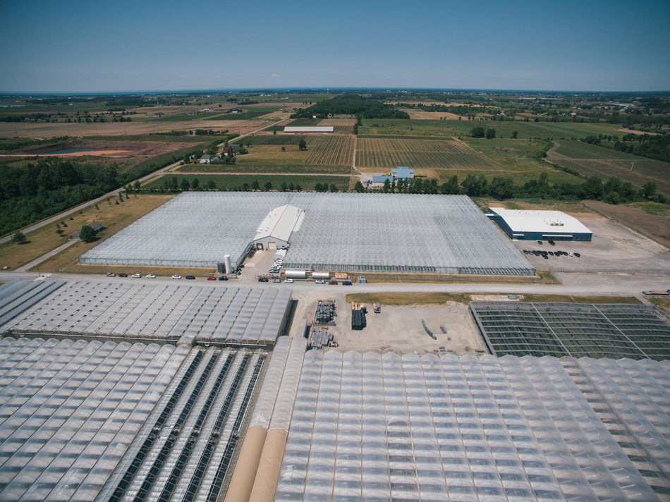 Aerial view of Tweed Farms, Niagara-on-the-Lake (CNW Group/Canopy Growth Corporation)