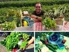 Farmer Joe's Gardens Announces Seasonal Start to Local Farmer Harvest Program and Yearly Community Food Initiative