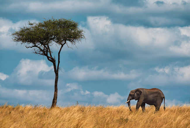 The beautiful landscapes of Tanzania
