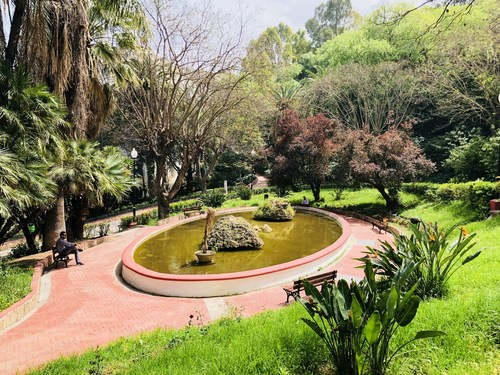 The Algiers World Peace Garden will be situated in Parc de la Liberte in the capital.