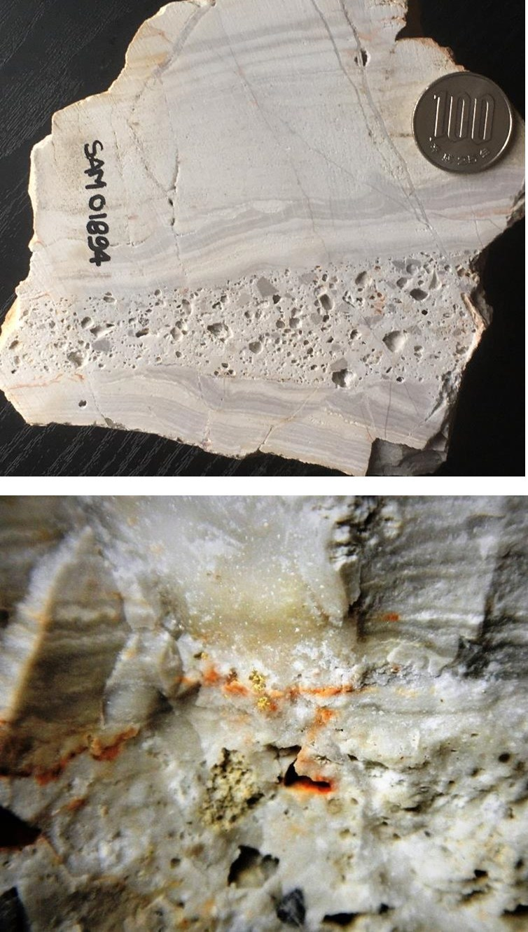 Figure 4a and 4b: Showa mine dump sample, visible gold in thin quartz stockworks cutting silicified laminated mudstone (top image), field of view in bottom image is about 10 cm; SAM01894: 19.35 g/t Au, 8.49 g/t Ag (CNW Group/Japan Gold Corp.)