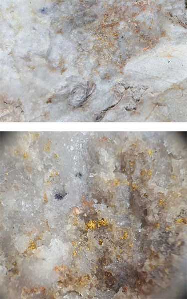 Figure 3a and 3b: Showa mine dump sample, visible gold and silver sulphosalts in thin quartz stockworks cutting silicified fossiliferous laminated tuffaceous mudstone (top image), bottom image zoomed in field of view is approximately 1 cm; SAM01867: 93.3 g/t Au, 17.35 g/t Ag, 21.4 ppm Sb (CNW Group/Japan Gold Corp.)