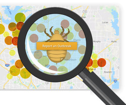 Lice Treatment Center Launches Head Lice Tracker for Parents and Schools to View & Report Activity in Dallas Area