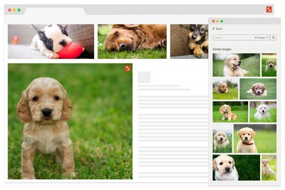 Shutterstock Launches Suite of Deep Learning-Powered Search Tools Including Reveal, a New Plugin for Google Chrome. Reveal allows users to select any image online and find a similar photo, vector or illustration within Shutterstock's collection of more than 190 million licensable and ready to use high-quality images.