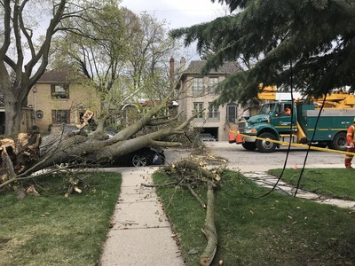 Hundreds of powerlines were brought down during a May 4, 2018 windstorm in Toronto (CNW Group/Toronto Hydro Corporation)