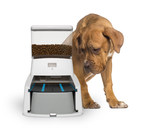 New Wagz™ Serve Smart Feeder May Be Smarter Than Your Pup