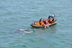 The Canadian Coast Guard's seasonally operated Inshore Rescue Boat stations in Ontario are now in service.  In this file photo from July 2017 the Inshore Rescue Boat crew from Thames River Ontario rescues two men from a capsized fishing boat on Mitchell's Bay Lake St. Clair. Photo courtesy of the United States Coast Guard. (CNW Group/Fisheries and Oceans Central & Arctic Region)