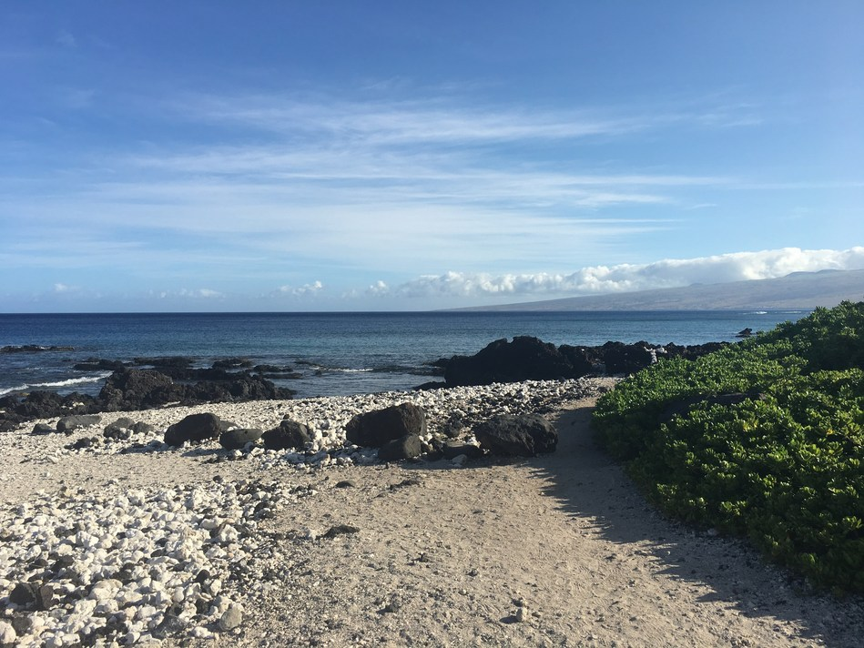 Photo of the Kohala Coast on the island of Hawaii taken this morning.