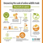 IFAW's latest report on online wildlife trade highlights the scale and nature of advertisements in four key countries