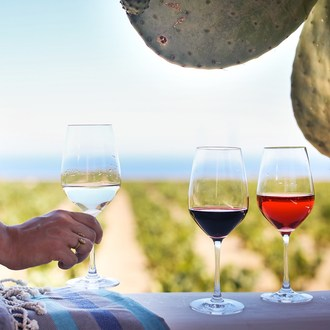 Summer is the Ideal Time to Sip Fresh, Friendly Sicilian Wines, Which are Arriving in America in Record Numbers