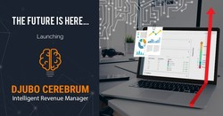 DJUBO Cerebrum: Intelligent Revenue Manager for Hotels, B&B, Vacational Rentals.