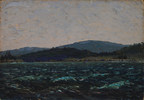 From basement to auction block: Tom Thomson painting sells for $481,250
