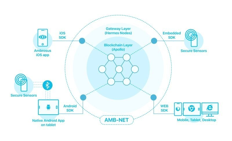 AMB-NET distributed network is an interoperable platform allowing sensors, apps, and traditional IT systems to talk to each other and exchange data in a seamless and trusted manner. Thanks to our modern API and developer-friendly SDKs, businesses can enter the blockchain space and leverage the latest technologies for their supply chains at a fraction of the cost, time, and pain compared to other solutions on the market today (PRNewsfoto/Ambrosus Technologies GmbH)