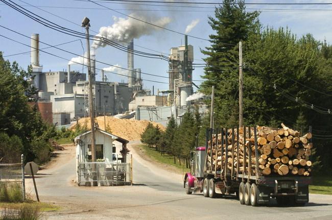 Pulp & Paper Mill