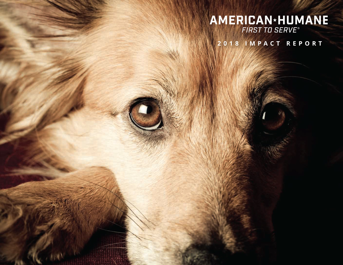 American Humane's 2018 Impact Report details the organization's global efforts in helping save and improve the lives of some one billion animals in the past year.