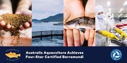 Australis Barramundi achieves four-star BAP certification, the highest designation in the BAP certification program.