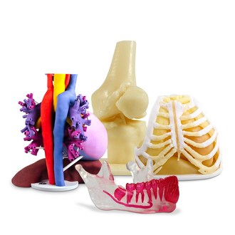 Anatomical models in a variety of materials for 3D visualization of complex anatomy.