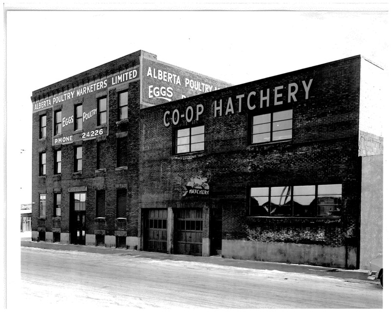 The company's building in the 1950s. (CNW Group/Lilydale)