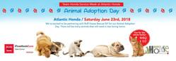 Atlantic Honda hosts animal adoption event with Ruff House Rescue.ww