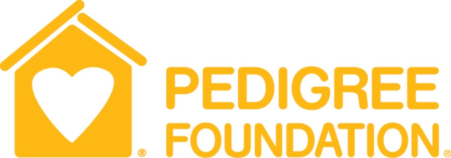 Pedigree Foundation Awards 2019 Grants To Help End Pet Homelessness