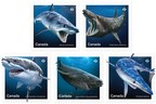 Stamps celebrate sharks in Canadian waters (CNW Group/Canada Post)