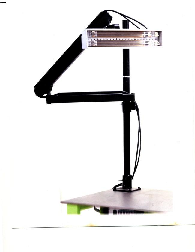 LightWave Stripping, Inc.