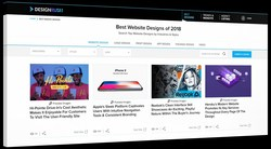 Growing businesses can search for the best web designs by industry and style on DesignRush, which allows them to discover top inspiration and new features that could improve their own professional sites.
