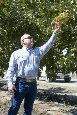 Pistachio grower Rick Borges