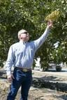 American-Grown Pistachio Consumption Increases Globally
