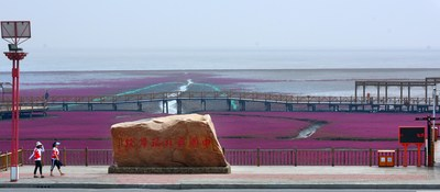 Red Beach has been identified on the location of China's northernmost coast