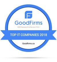 Top IT Companies - 2018