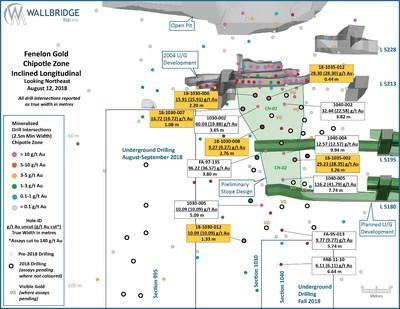 Figure 3: Fenelon Gold, Chipotle Zone Inclined Longitudinal (CNW Group/Wallbridge Mining Company Limited)