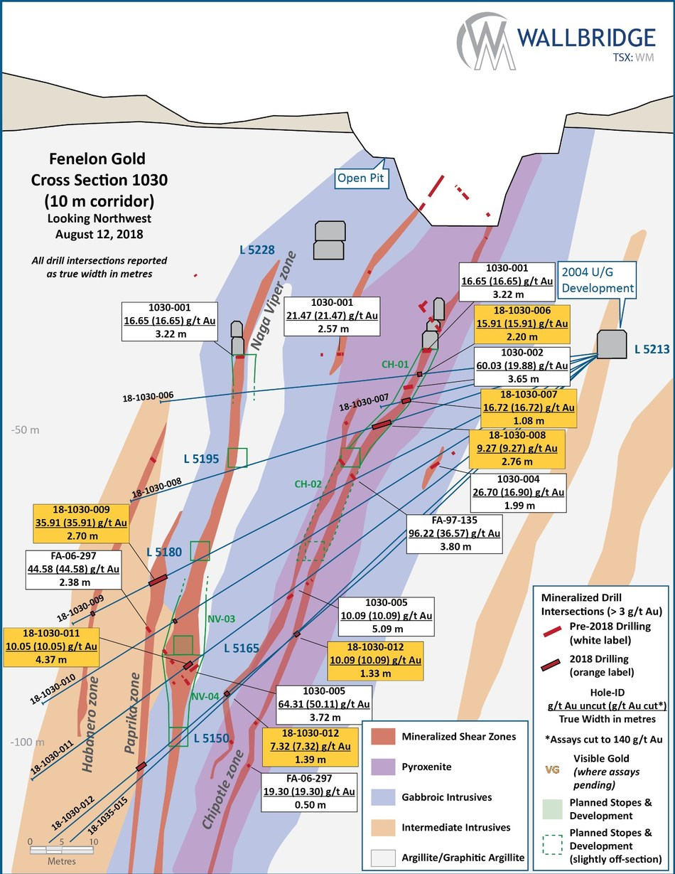 Figure 5:  Fenelon Gold, Cross Section 1030 (CNW Group/Wallbridge Mining Company Limited)