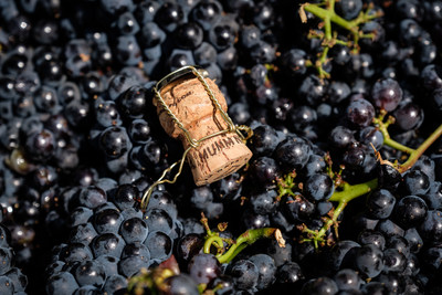 Mumm Napa Kicks Off 2018 Harvest with Winery celebration in Napa Valley