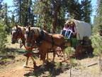 Wagons Ho! Take a Lyft on the Travel Oregon Trail