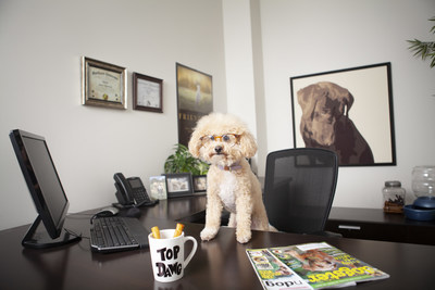 Petmate introduces first ever CFO - Chief Four-Legged Officer: Charlie Chernick
