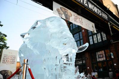 Melting Life-Size Elephant Ice Sculpture Symbolized Disappearing Elephant Population (CNW Group/Amarula Cream)